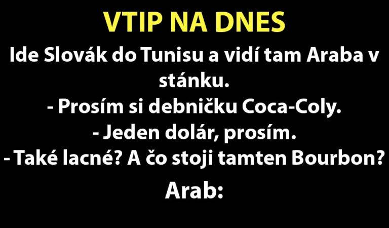NEMRAVNÝ VTIP: Príde Slovák na dovolenku do Tunisu…
